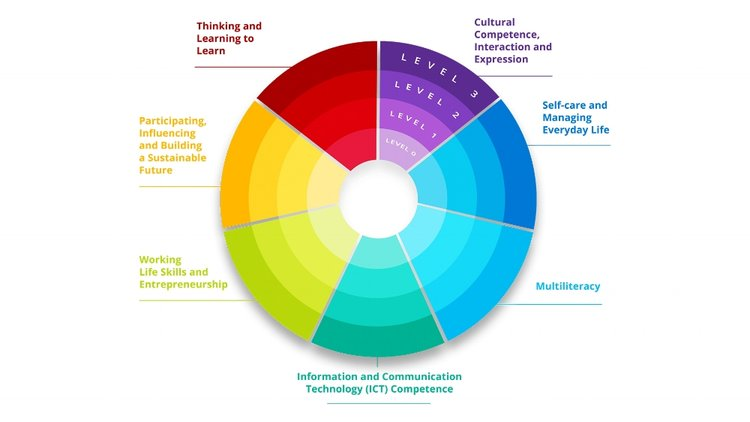 21st Century Competencies/Transversal Competencies